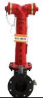 <b>地上水泵接合器</b>